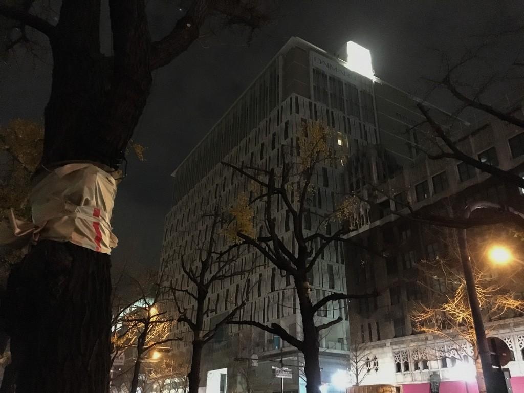 午前5時50分の心斎橋御堂筋