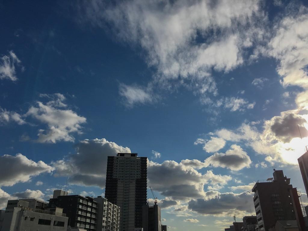 大阪西区木津川伯楽橋からの眺め